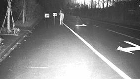 cilvēks uz ceļa nakts laikā, video ieraksts
